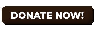 DonateNowBTN